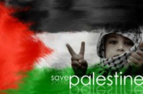Article : Palestine ou Pas-L'estime ? #HelpGaza